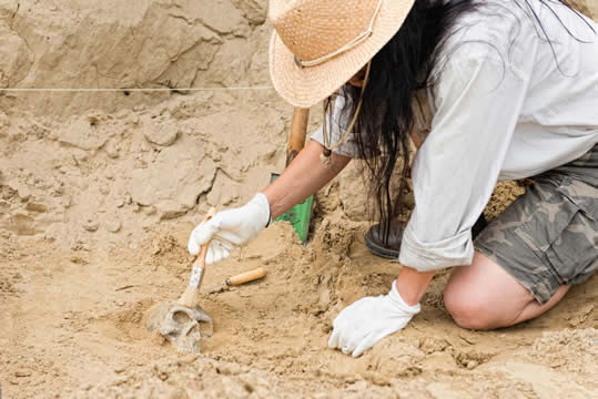 a woman with a sun hat and rubber gloves using a brush to clean a small skull partially buried in sand