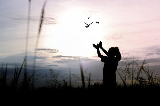 photo of a girl looking at birds flying in the sky; she is making wing shapes with her uplifted arms